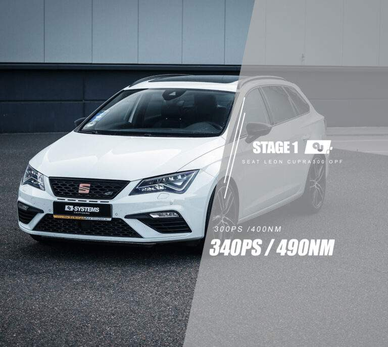 Stage 1 Optimierung Seat Leon Cupra300 OPF