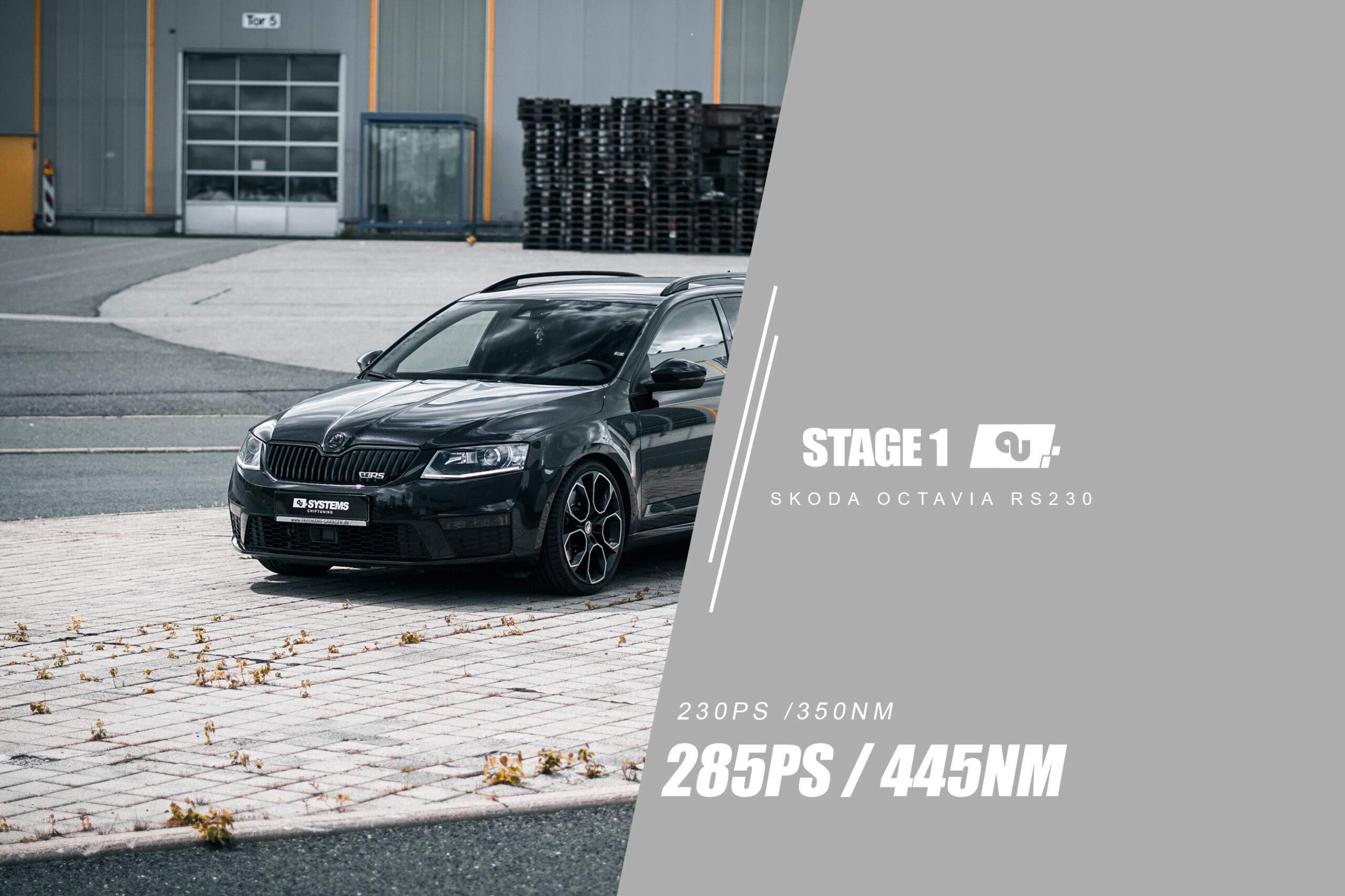 Stage 1 Optimierung Skoda Octavia RS230